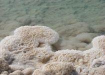 День отдыха на Мертвом море – пляж-1606