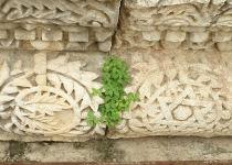 Галилея/Хайфа (из Иерусалима)-2298