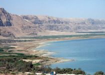 Индивидуальная экскурсия на мертвое море, гид водитель-2311
