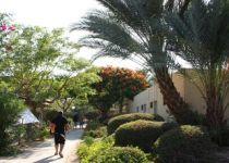 [KASKAD 2A]#2a Отдых и оздоровление в Израиле (Тель Авив, Нетания + Мертвое море)-233