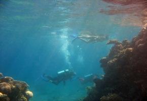 Эйлат, Красное море