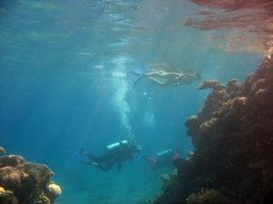 Эйлат, Красное море|escape