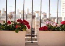 U Suites Hotel (ex:Le Meridien Eilat Hotel)-593